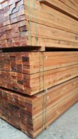 Sawn Tropical Timber  - MALAYSIA KAPUR TIMBER FOR SALE