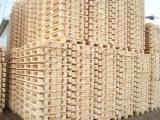 Pallets – Packaging All Specie - Euro Pallet - Epal, New