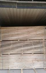 Woodworking - Treatment Services - Services for drying lumber