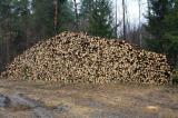 Softwood  Logs Spruce Picea Abies - Whitewood - Spruce pulp logs