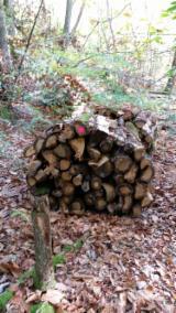 Oak  Firewood, Pellets And Residues - PEFC/FFC Oak (European) Firewood/Woodlogs Cleaved 15 cm