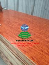 China Supplies Fancy (Decorative) Plywood, melamine paper