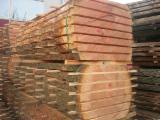 Softwood  Unedged Timber - Flitches - Boules FSC - Boules, Douglas Fir (Pseudotsuga), FSC