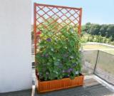 Buy Or Sell Wood Flower Pot - Planter - Flower planter, wall hanger for sale