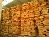 Romania Unedged Timber - Boules - Beech (Europe), Boules