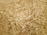 Energie- Und Feuerholz - Pappel Sägehackschnitzel 40/50 mm