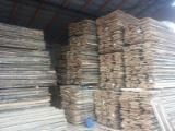 Hardwood  Unedged Timber - Flitches - Boules Beech Europe - Loose, Beech (Europe)