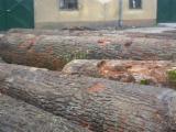 null - Oak veneer logs