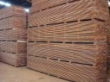 Sapelli  Unedged Timber - Boules - Sapele FAS AD [SIM - Cameroon]