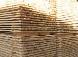 Softwood  Logs For Sale Poland - Pine, Spruce