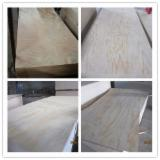 Pine Commercial Plywood /Okoume Plywood Size1220x2440mm