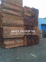 Tropical Wood  Sawn Timber - Lumber - Planed Timber - Tali sawn timber (Erythrophleum guineense, ivorense)