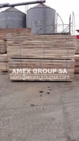 Beli sawn timber (Julbernardia pellegriniana)