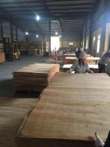 Rotary Cut Veneer For Sale - Rotary Cut Eucalyptus Figured Veneer