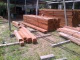 Tropical Wood  Sawn Timber - Lumber - Planed Timber - African sawn wood lumber and squared logs available