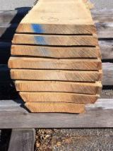 Hardwood  Unedged Timber - Flitches - Boules - Oak unedged boards