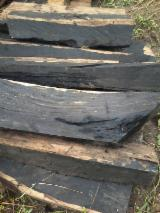 Saw Logs, Grenadillo (Ebene du Mozambique, Blackwood), Cameroon