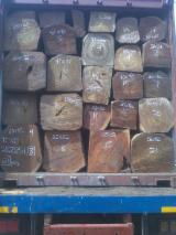 Forest And Logs Africa - Tali Rough Square for sale