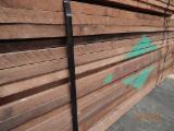 Hardwood  Sawn Timber - Lumber - Planed Timber Walnut American Black - Walnut sawn timber