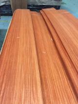 Sliced Veneer AA Extra For Sale - Natural Veneer, Padouk (Burma), Flat cut, plain
