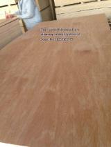 Bintangor veneered plywood