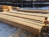 Softwood  Sawn Timber - Lumber Spruce Pine For Sale - Lumber of Siberian larch
