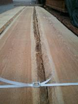 Softwood  Unedged Timber - Flitches - Boules - Boules, Siberian Larch