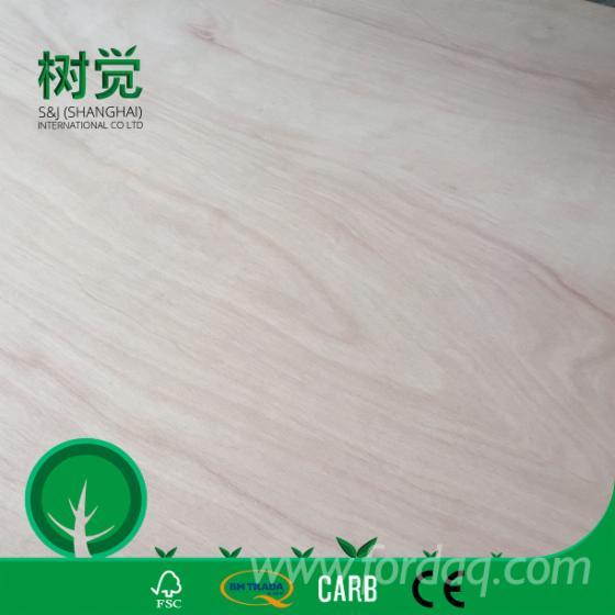Natursperrholz, Eukalyptus