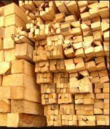 Softwood  Sawn Timber - Lumber Fir Abies Alba, Pectinata For Sale Romania - 20+ mm, Fresh sawn, Fir (Abies alba, pectinata)