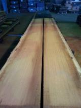 Hardwood  Unedged Timber - Flitches - Boules FSC For Sale Germany - IROKO BLOCKWARE KD FSC 100%
