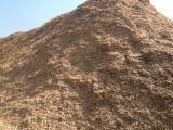 Brandhout - Resthout Houtspaanders Van Gebruikt Hout - All Coniferous Houtspaanders Van Gebruikt Hout 100 mm