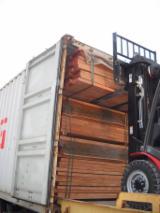 Hardwood - Square-Edged Sawn Timber - Lumber Supplies - Romanian Beech Wood Timber
