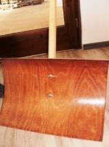Finden Sie Holzlieferanten auf Fordaq - Europäisches Laubholz, Buche