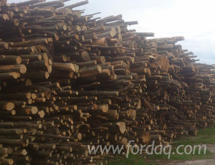 Buy-firewood
