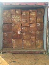Coupe propre Tali / Potrodum / Erythrophleum Ivorense