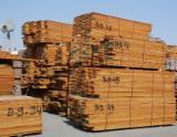 Burma Teak Rough Sawn Timber