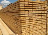 Hardwood  Logs Acacia For Sale - Logs and lumbers, pellet