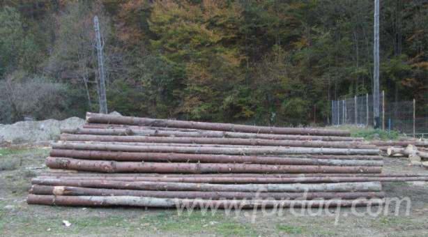 Spruce--8--cm-bile-manele-Construction-Round-Beams