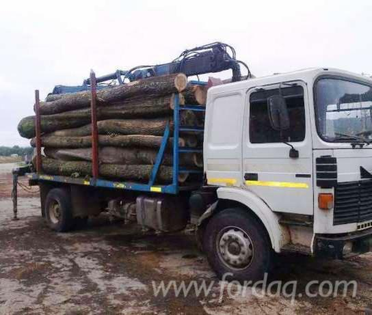Used 2004 truck lorry for sale romania for Romana diesel usato