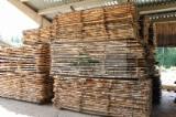 Hardwood  Sawn Timber - Lumber - Planed Timber Birch Europe - AA-AB Grade Fresh Birch Lumbers