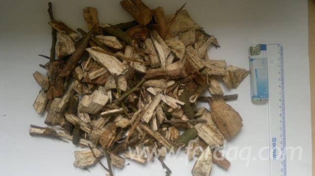 All-coniferous-Wood-Chips-From-Forest-in