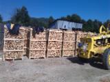 Firewood - Chips - Pellets Supplies Wholesale Beech (Europe) Firewood/Woodlogs Cleaved in Romania