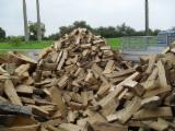 Leños- Bolitas – Astillas – Polvo - Bordes CE - Al por mayor Leña/Leños Troceados CE Roble (europa) en Bélgica