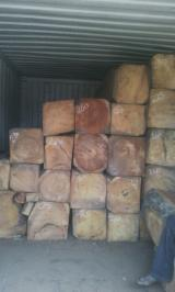 Tropical Wood  Logs - DOUSSIE SQUARE LOGS OFFER