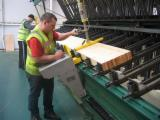 Romania Supplies - New TAYLOR Hand Fed Veneering Presses For Flat Surfaces For Sale Romania