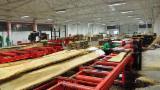 Wravor Woodworking Machinery - New Wravor WRC-1250 Log Band Saw Horizontal For Sale Romania