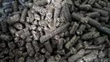 Poland Firewood, Pellets And Residues - Sunflower husk offer
