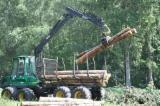 Germany Softwood Logs - Pine (Pinus sylvestris) - Redwood, 20-65 cm, B/C, Saw Logs, Germany