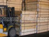 Plywood Birch Europe For Sale Italy - Economy C/C grade Birch plywood 3-21x1525x1525 mm from Russia