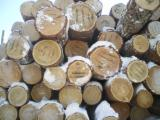 Softwood  Sawn Timber - Lumber Spruce Pine For Sale - Edged Larch lumber